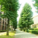 大学生必見!WiMAXは大学生協よりネットで契約した方が良い理由!